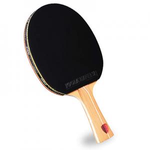 Joola Omega Control Table Tennis Racket